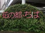 千葉県千葉市 夏の『通信制高校・サポート校合同相談会』